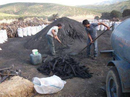 Mangal Kömürü Üretimi
