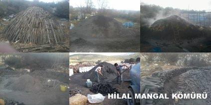 Mangal Kömürü Hakkında